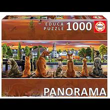 1000 PERROS EN EMBARCADERO